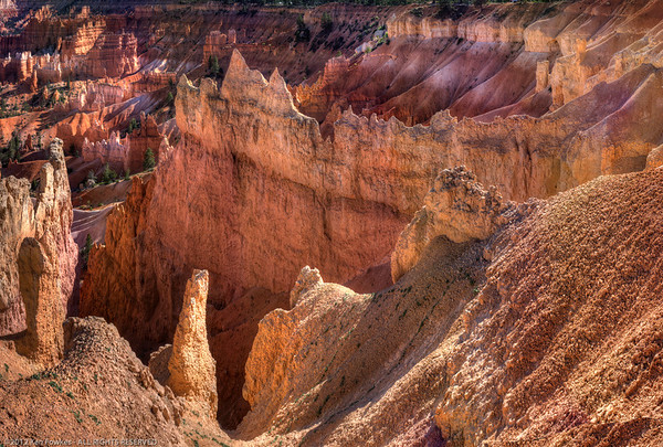 Looking down into Bryce Canyon.