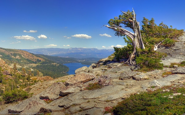 Overlooking Donner Lake